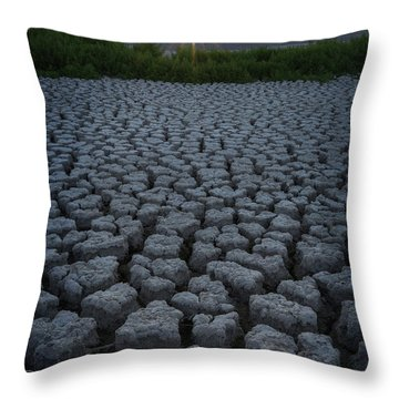 Throw Pillow featuring the photograph Desert West by Dustin LeFevre