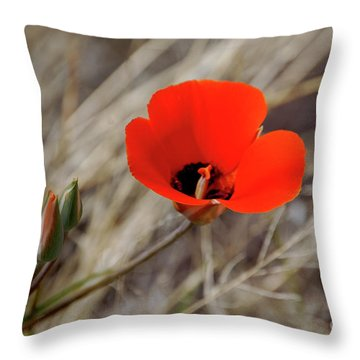 Desert Wildflower Throw Pillow