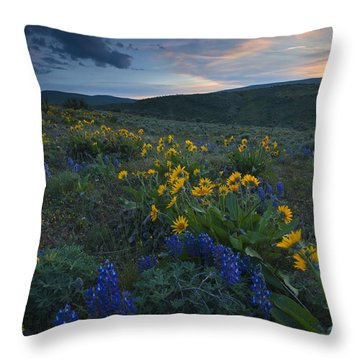 Desert Wildflower Sunset Throw Pillow