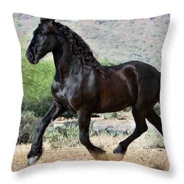 Desert Wind Throw Pillow