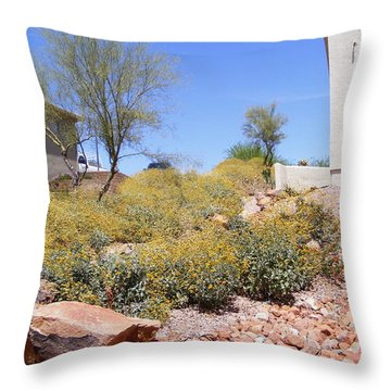 Desert Yard Throw Pillow