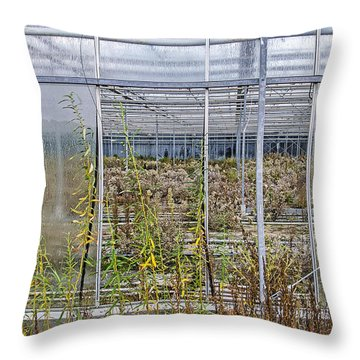 Deserted City Of Glass Throw Pillow