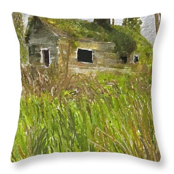 Deserted Throw Pillow by Dale Stillman