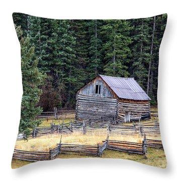 Deserted Farm Throw Pillow