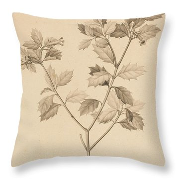 Desfonainia Spinosa Throw Pillow