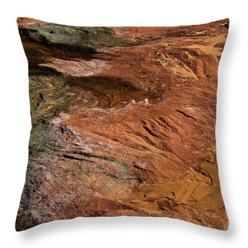 Designs In Stone Throw Pillow by Kathy McClure