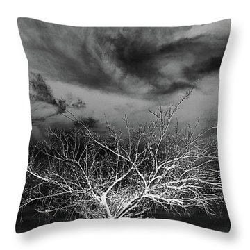 Desolate Feel Throw Pillow