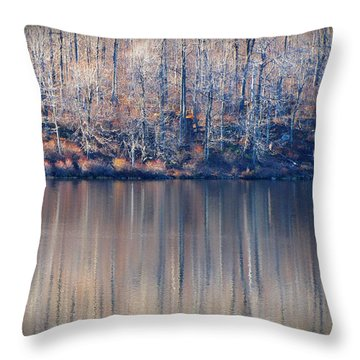 Desolate Splendor Throw Pillow