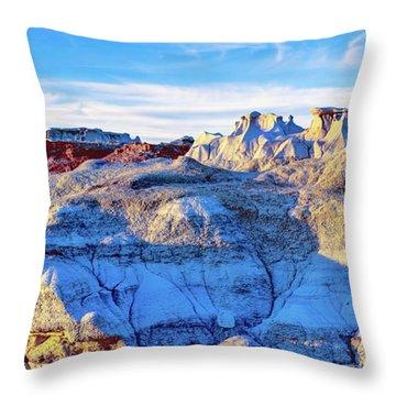 Desolate Wilderness Throw Pillow