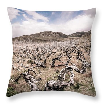 Desolation Throw Pillow by Andrew Matwijec