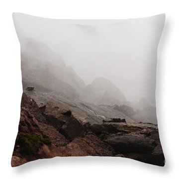 Throw Pillow featuring the photograph Still Untouched By Men by Dana DiPasquale