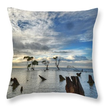 Desolation Throw Pillow by Robert Charity