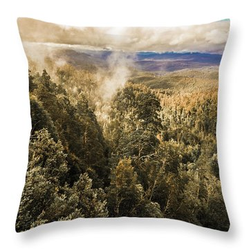 Destination Beautiful Throw Pillow