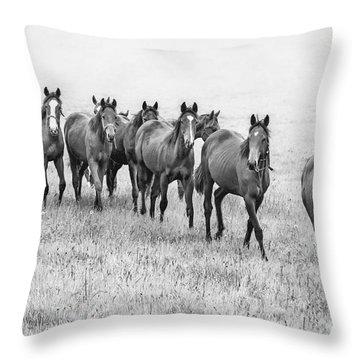 Destiny Of Freedom Throw Pillow