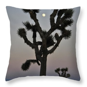Destiny Throw Pillow by Skip Hunt
