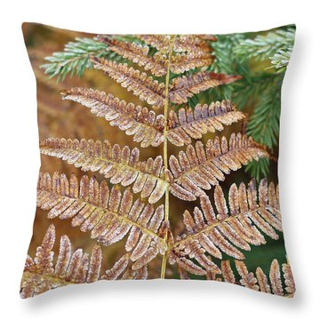 Detail Of Frozen Leaf Fern Throw Pillow