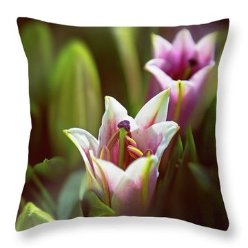 Detail Of Pink And White Oriental Lilies In Sunlight. Throw Pillow