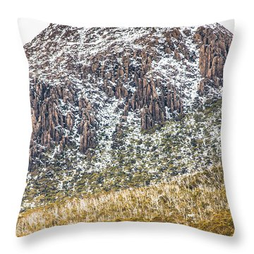 Detail On A Australian Snow Covered Mountain Throw Pillow