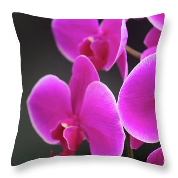 Details In Soft Colors  Throw Pillow