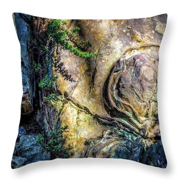 Throw Pillow featuring the photograph Details In The Rock by James Barber