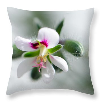 Details Throw Pillow