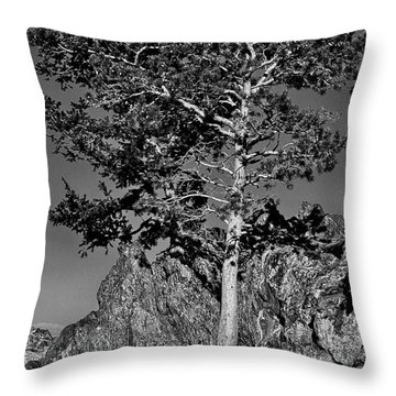 Determined, Monochrome Throw Pillow