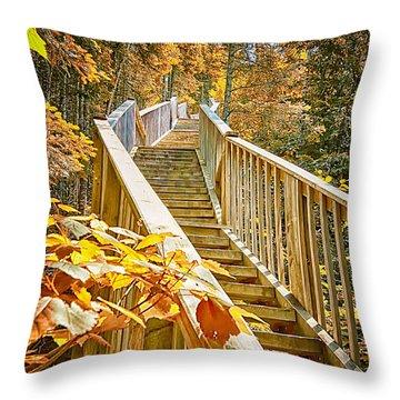 Devil's Kettle Stairway Throw Pillow by Linda Tiepelman