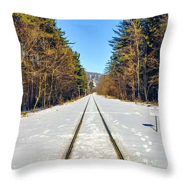 Throw Pillow featuring the photograph Devil's Lake Railroad by Ricky L Jones
