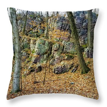 Throw Pillow featuring the photograph Devils Lake Rock Formation  by Ricky L Jones