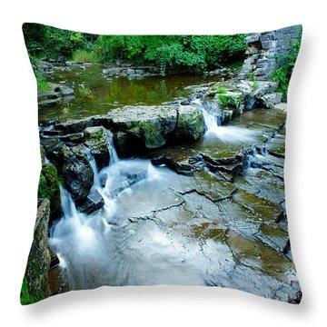 Devils River 1 Throw Pillow