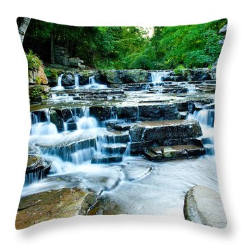Devils River 2 Throw Pillow