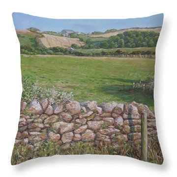 Throw Pillow featuring the painting Devon Field And Drystone Wall by Martin Davey