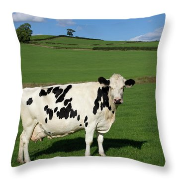 Devon Milk Factory Throw Pillow