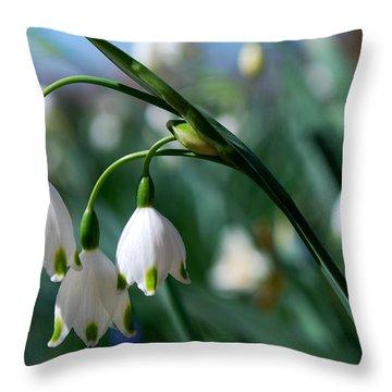 #devoteesofthegoddess Throw Pillow by Becky Furgason