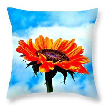 Devotion Throw Pillow by Gwyn Newcombe