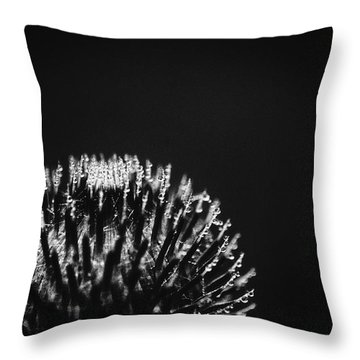 Dew Collector 5 Throw Pillow