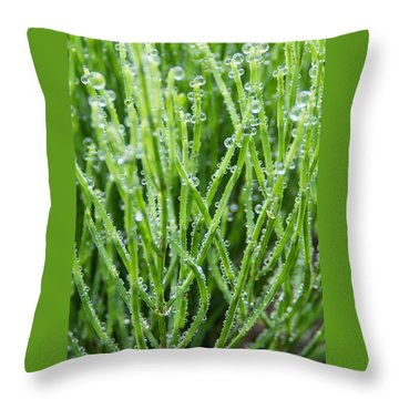 Dew Drop Throw Pillow