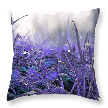Dew Drops Magic Two Throw Pillow by Robert Ball