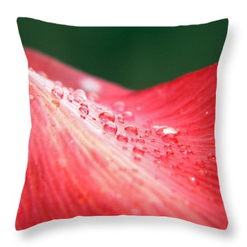 Dew Drops On A Wave Of Red Throw Pillow