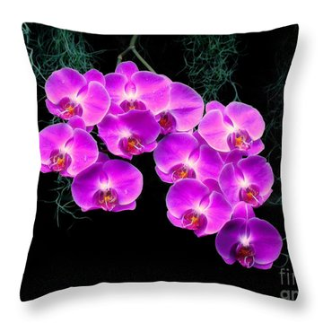 Throw Pillow featuring the photograph Dew-kissed Orchids by Sue Melvin