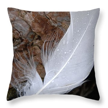 Dew On A Feather Throw Pillow by Robert Lacy
