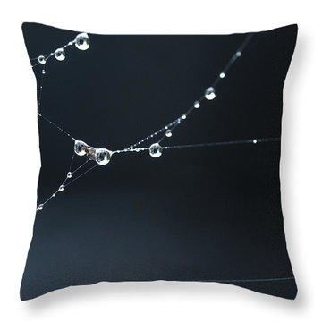 Dew On Cobweb 001 Throw Pillow