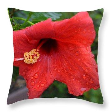 Dew On Flower Throw Pillow