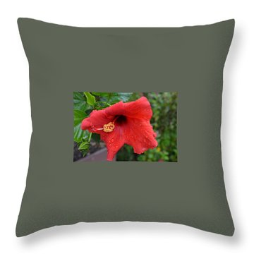 Dew On Flower Throw Pillow