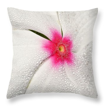 Dew-sprinkled Periwinkle Throw Pillow