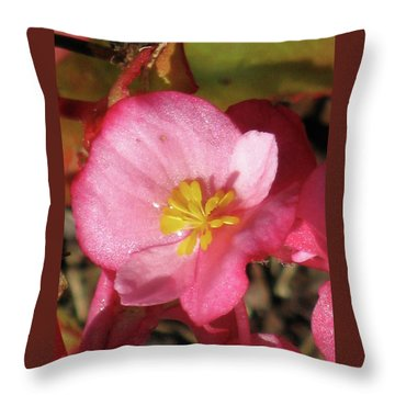 Dew Touched Throw Pillow by Michele Wilson