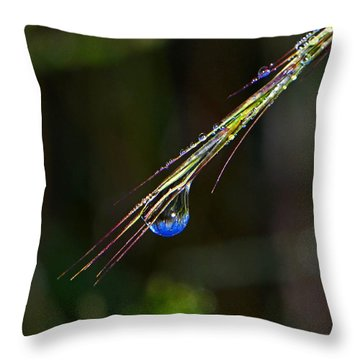 Dewdrop Reflection - Sunrise 001 Throw Pillow