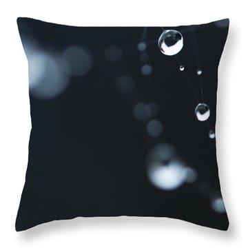 Dewdrops On Cobweb 004 Throw Pillow