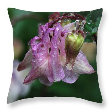 Throw Pillow featuring the photograph Dewey Morning Columbine by Susan Capuano