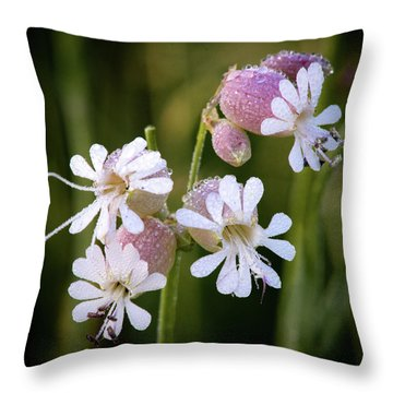 Dewy Morning Throw Pillow